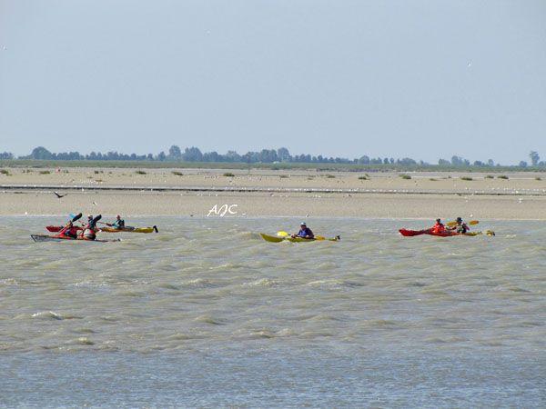 Chambre hôtes Les Vert Linettes  Canoé Kayak en Baie de Somme